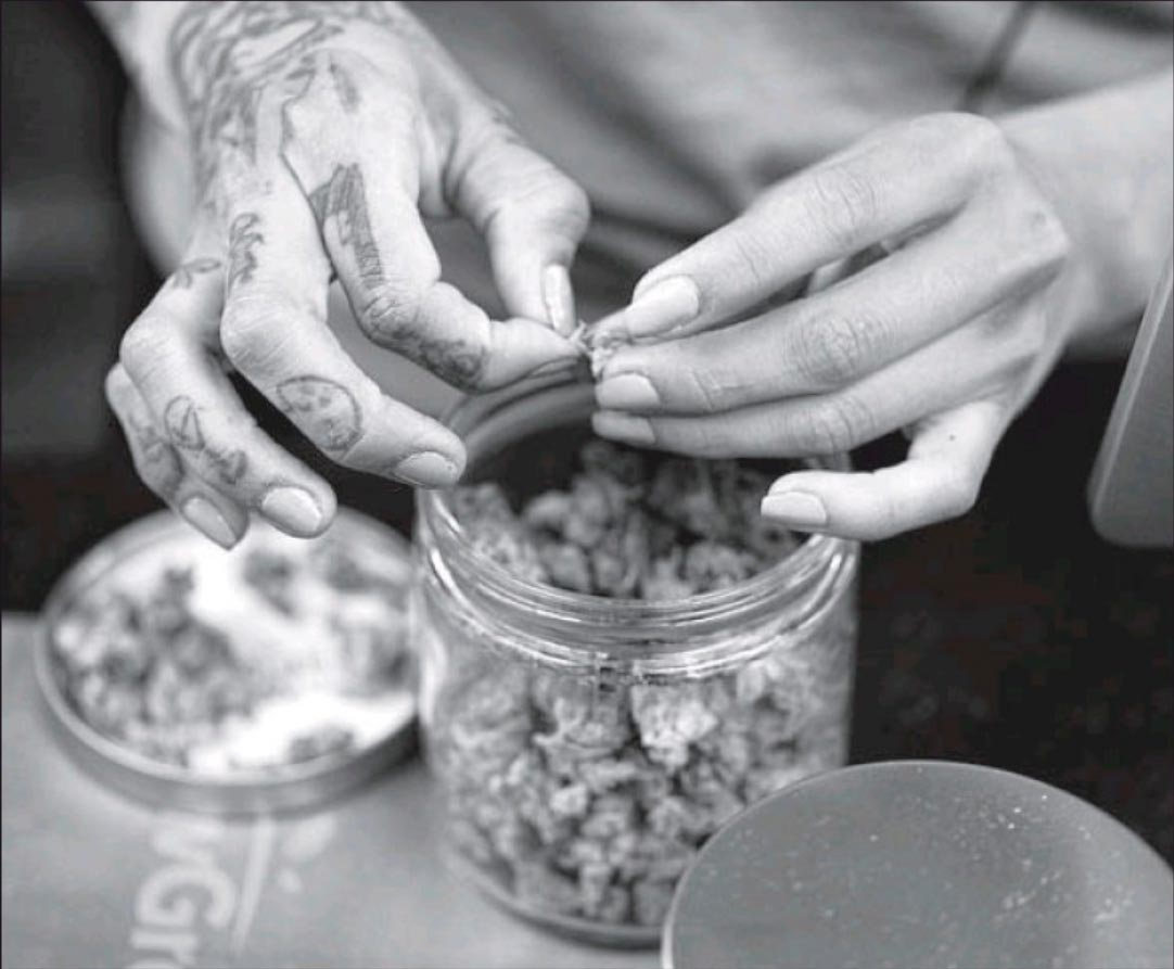 A budtends weighs out marijuana